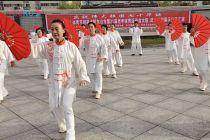 太极扇集体表演视频:东台东进武术队百盛代表队(2012.08.14)